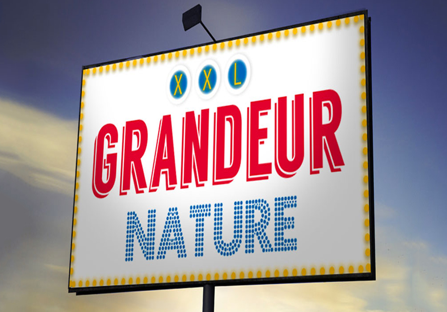 Affichage urbain à Lyon et partout en France
